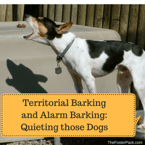 Territorial Barking and Alarm Barking: Quieting those Dogs