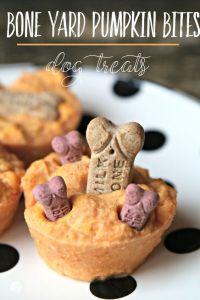 Boneyard Pumpkin Bites dog treats