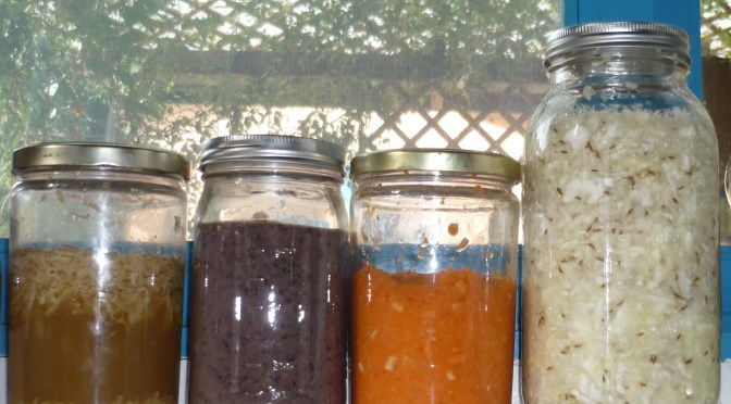 Lacto-fermentation and Probiotics 2: Condiments