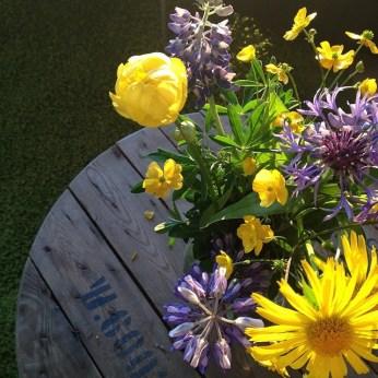 flower greenland 2014-07-28_1406591298