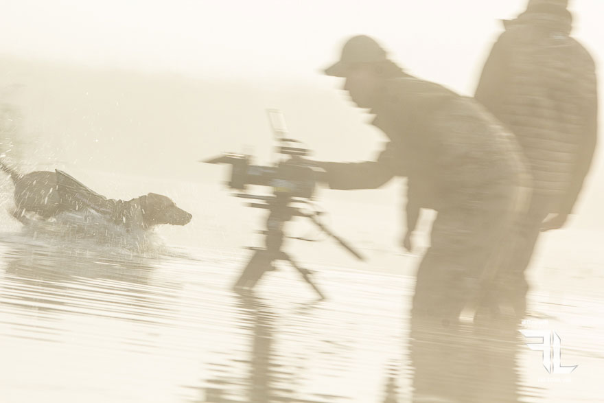 filming the hunting dog