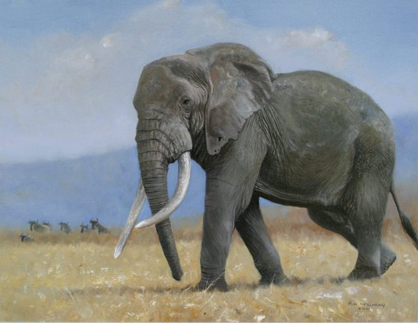 Elephant Paintings by Wildlife Artists