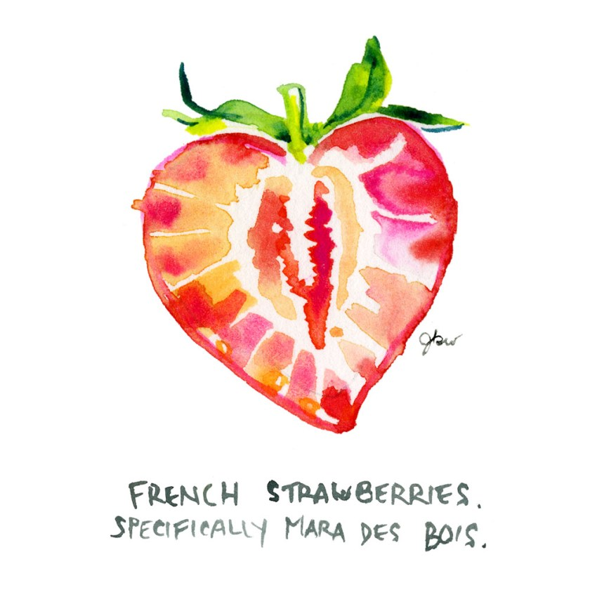 5. Jessie Kanelos Weiner_thefrancofly.com_strawberries
