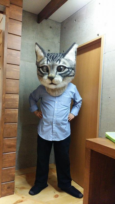 human cat head
