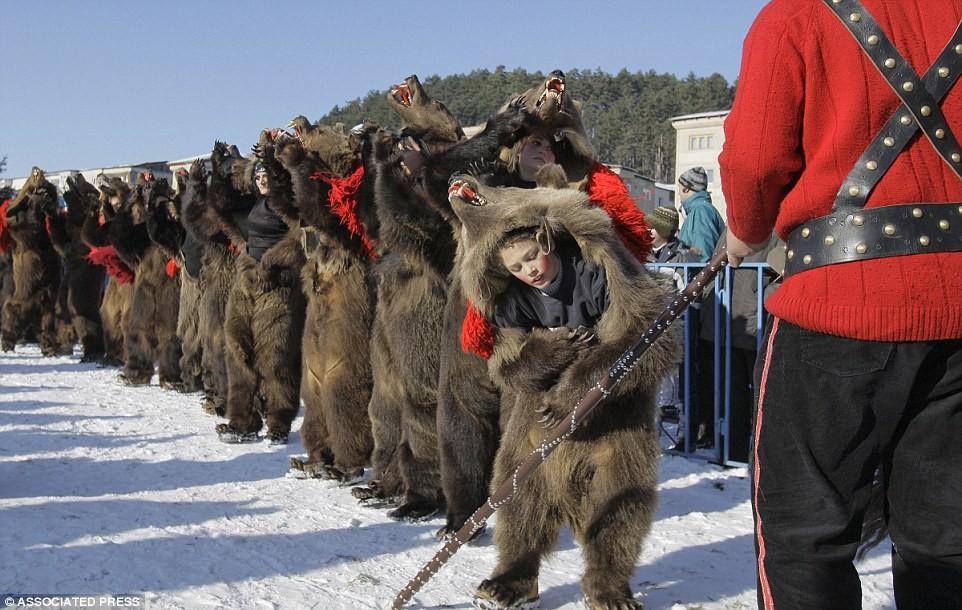 bear festival weird