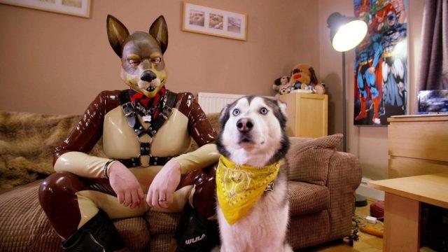 man dressed as dog fetish