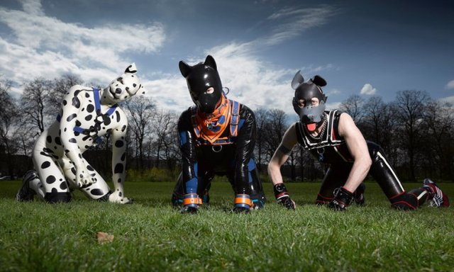 human pups 2