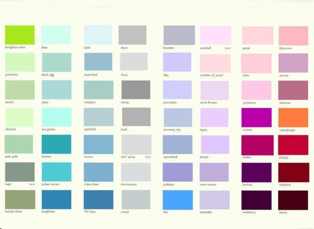 neuroscience colour