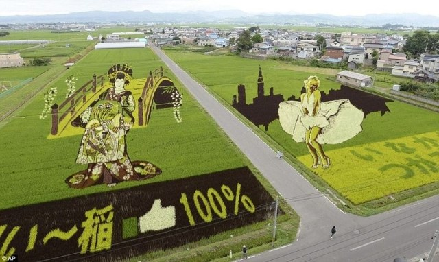 weird strange rice art