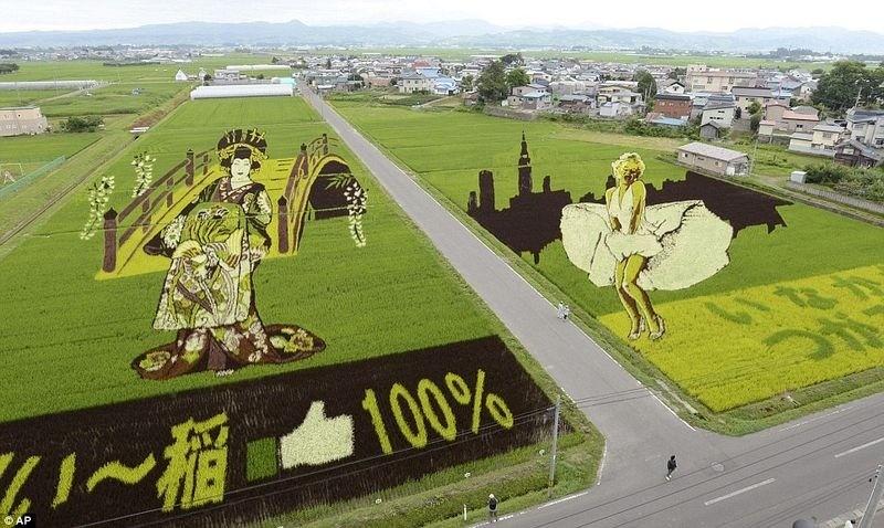 weird strange rice art