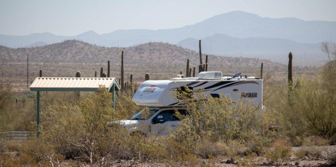 Saguaro Cactus Forest Campsite