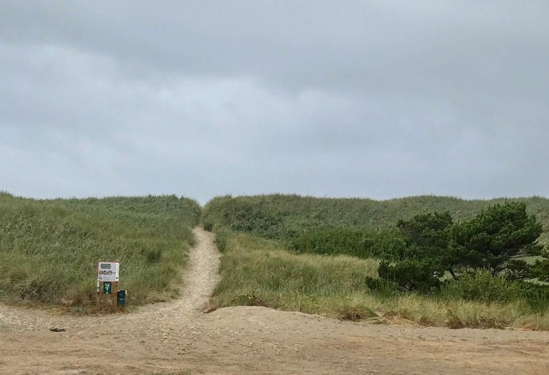 South Beach State Park Beach Access