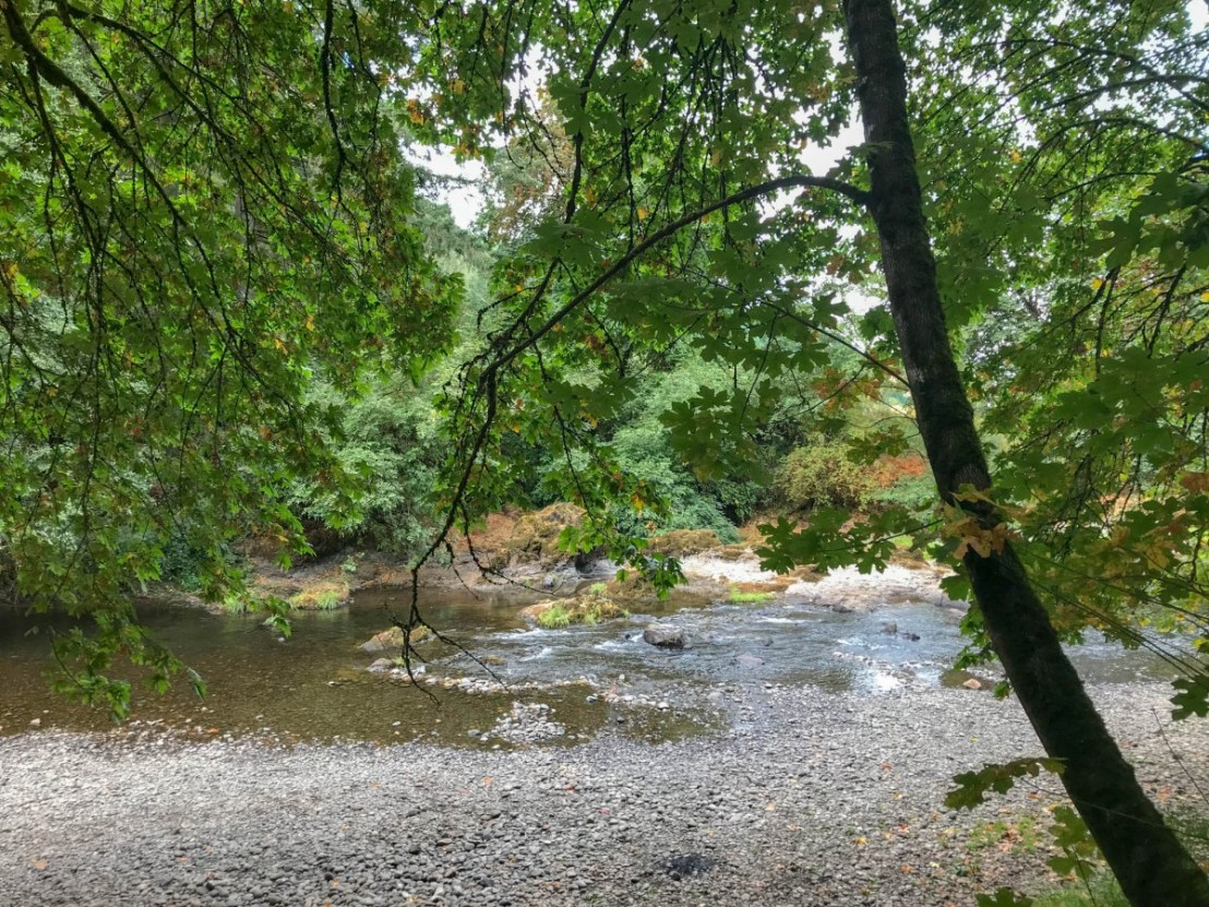 McKercher Park - Calapooia River