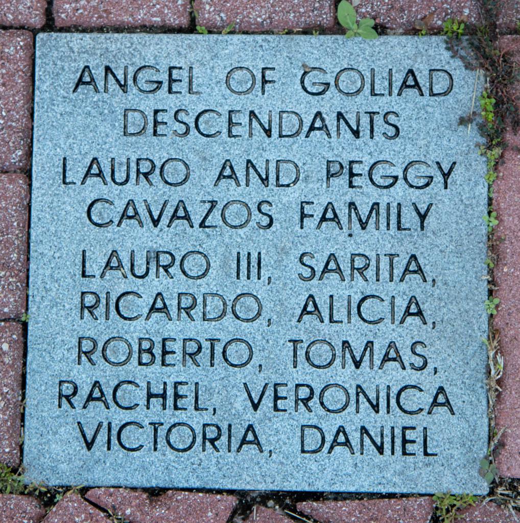 Angel of Goliad Descendants