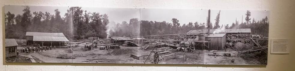 Lumber Mill Panorama