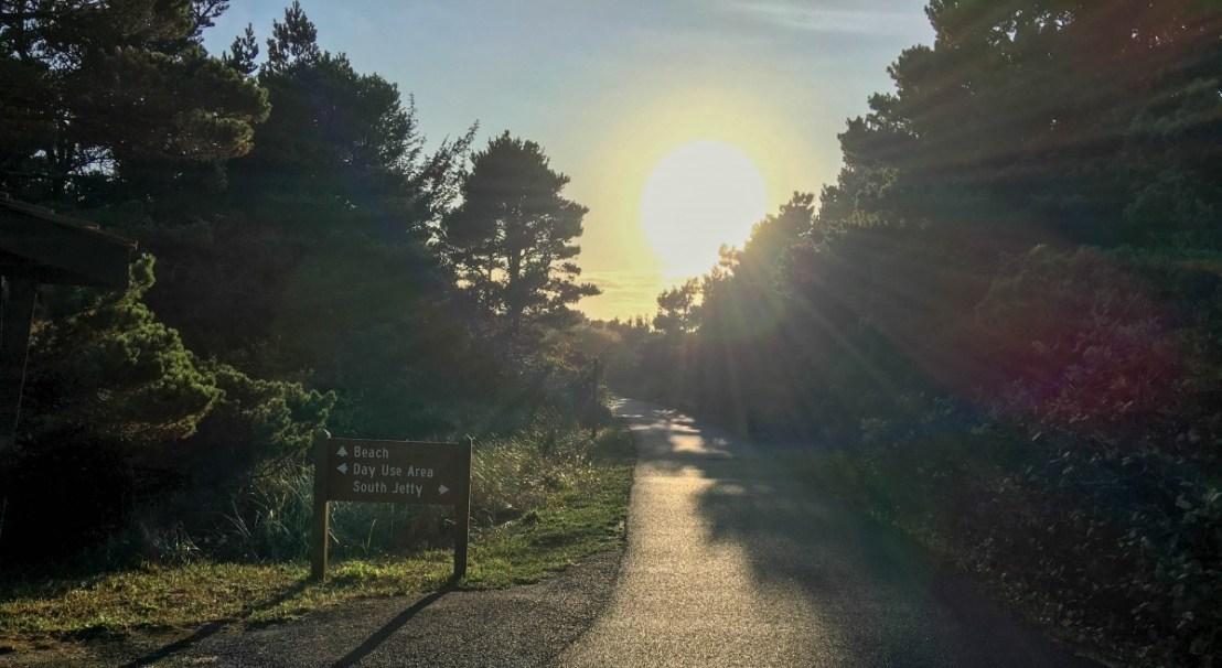 Interpretive Boardwalk Trail Crosses The South Jetty Trail