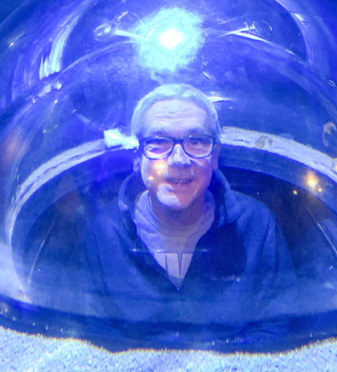 Audience Participation - Being In The Aquarium