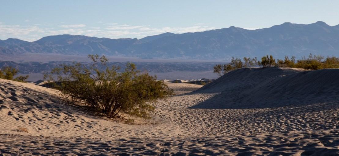 Death Valley National Park Mesquite Flats Sand Dunes