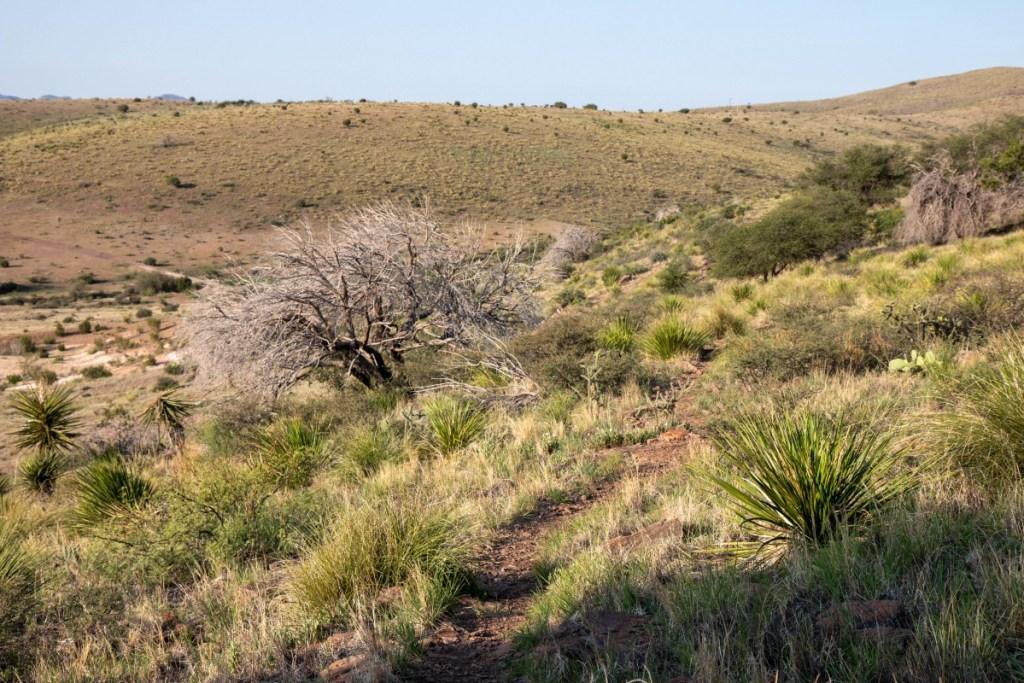 Rugged High Desert Mountain Terrain