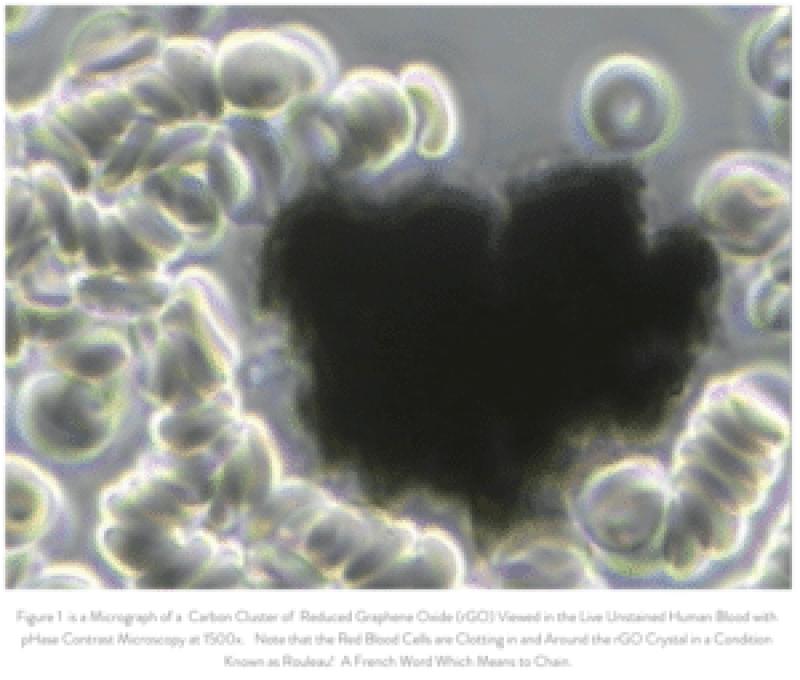graphene oxide in blood rouleau effect