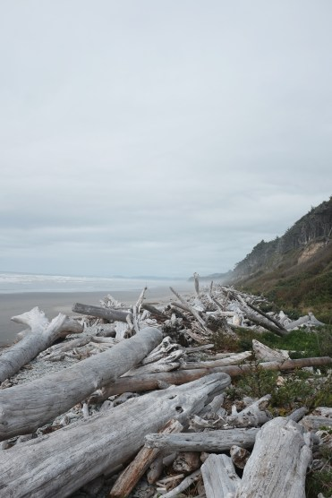 travel photography of driftwood and cliffs on a misty oregon beach