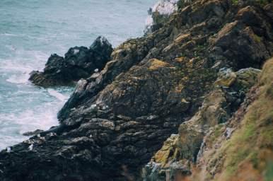 dublin_howth_cliff_walk_003