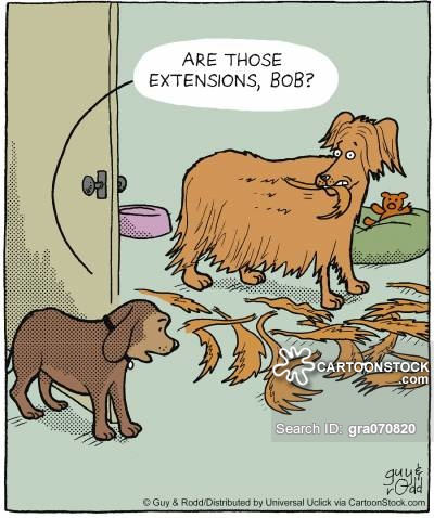 'Are those extensions, Bob?'