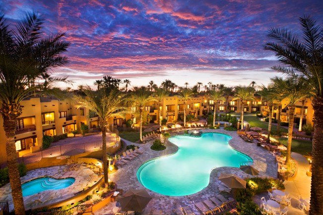 pool-palm-trees-overview