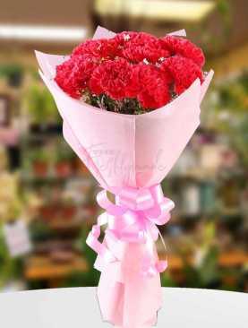 Friendship Carnations