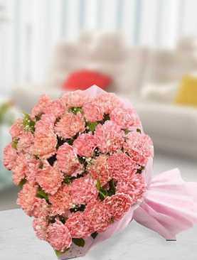Blushing Carnations