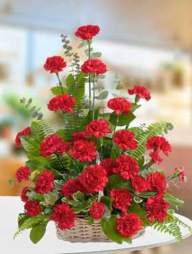 Traditional Carnations
