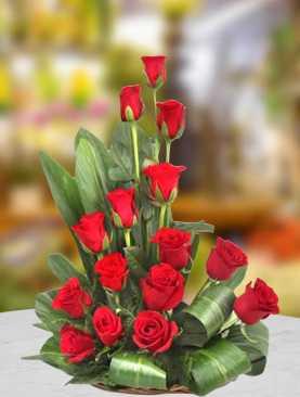 Very Merry Roses