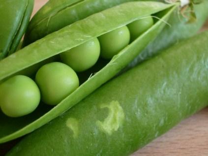 Freshly shelled peas_3