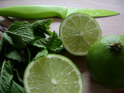 Mint and lime_4