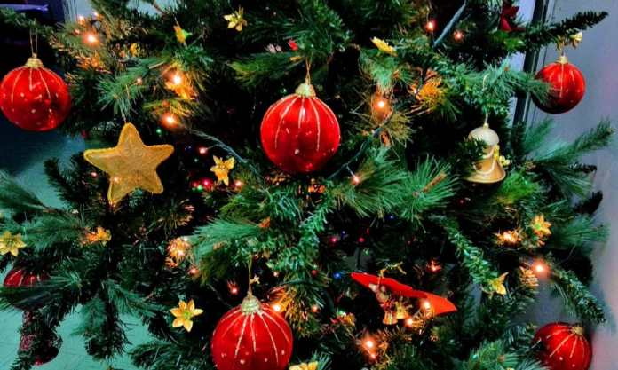 How To Keep Your Christmas Tree Fresh Throughout The Holidays