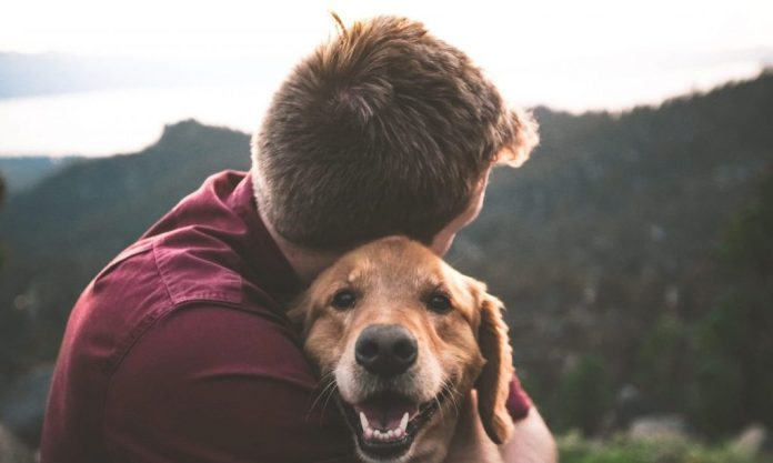 photo of man hugging tan dog