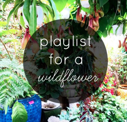 Wildflower Playlist