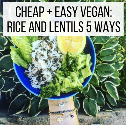 Cheap + Easy Vegan: Rice and Lentils 5 Ways