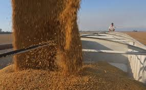 China purchases US soybeans amid trade war