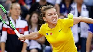 Halep pulls out of WTA tournament