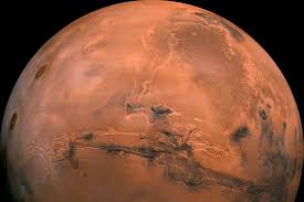 NASA found life on Mars in the 1970s but ignored it, former scientist claims