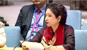 Pakistan raises human rights situation in IOK in UNGA's committee session
