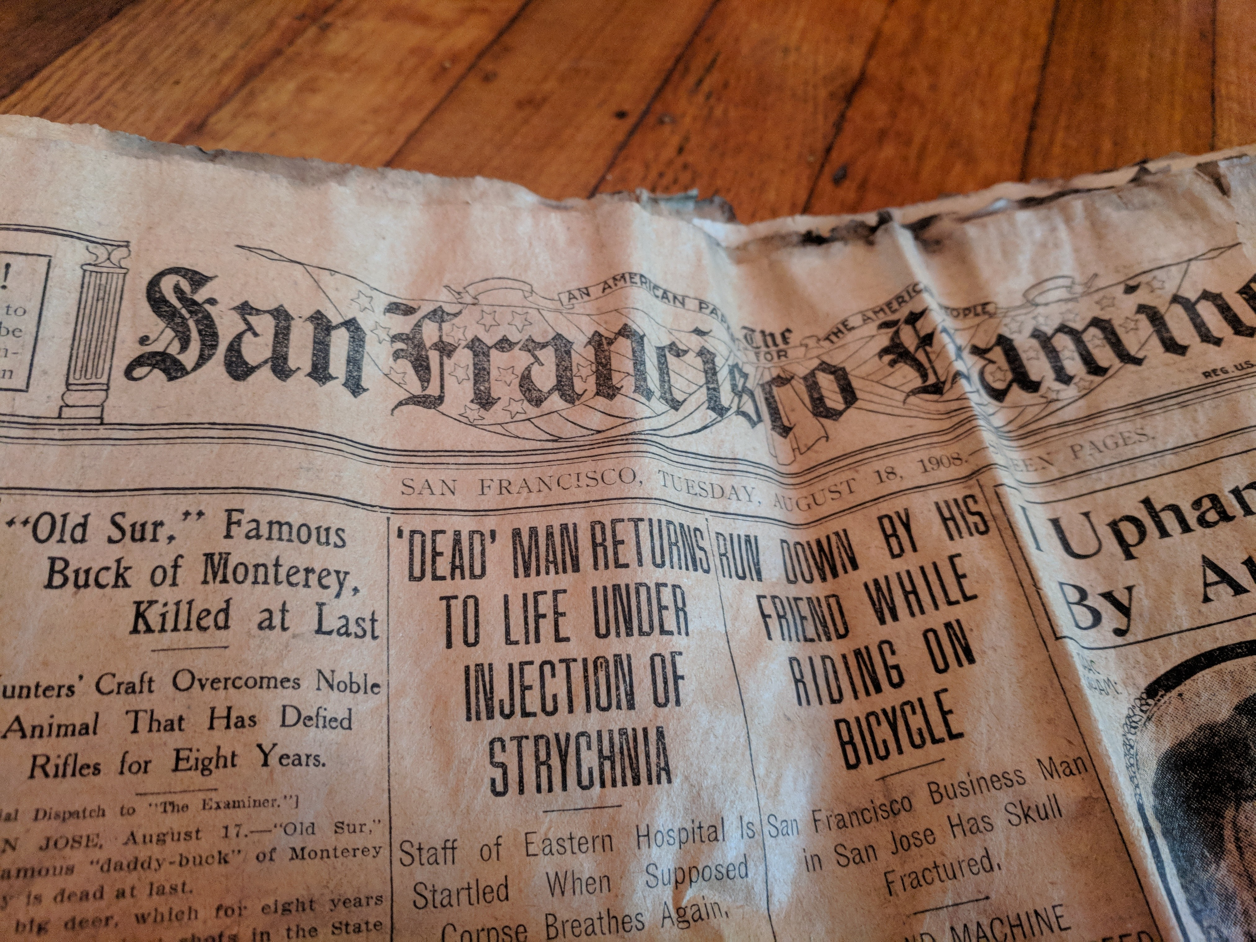 Cole Valley Flat For $15;  Scantily Clad Bathers Arrested; Dead Man Returns To Life – August 18, 1908