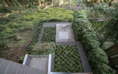 Clarendon-Garden