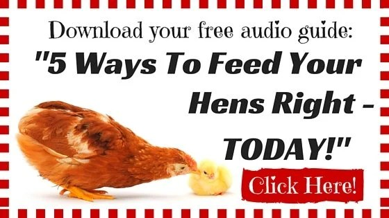 Download your free audio guide