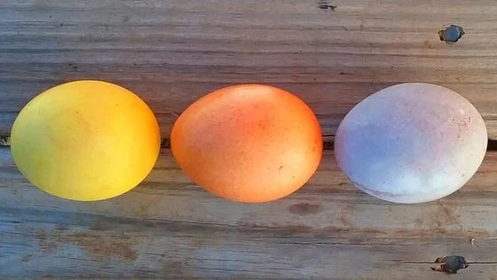 Natural Easter Egg Dyes: Create Beautiful One-of-A-Kind Easter Eggs!