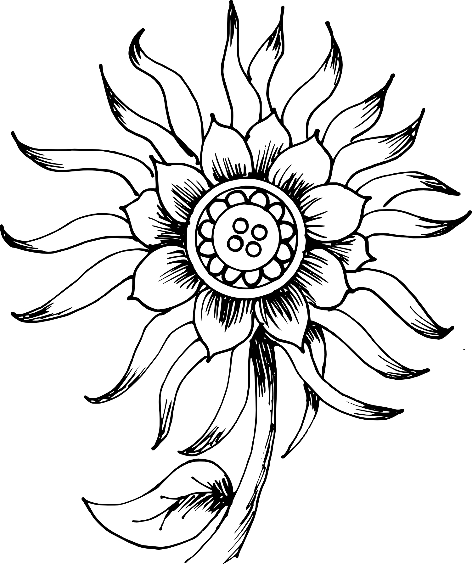 Organic Molecules Coloring Pages Coloring Pages
