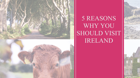 5 Reasons You Should Visit Ireland | Travel | Vacation | Ireland