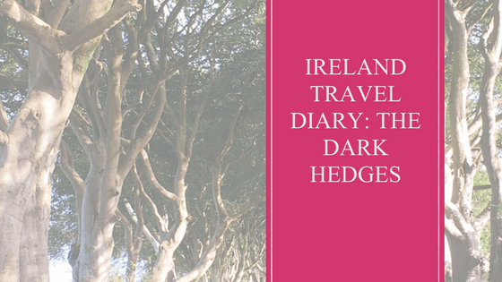 Dark Hedges | Travel | Ireland