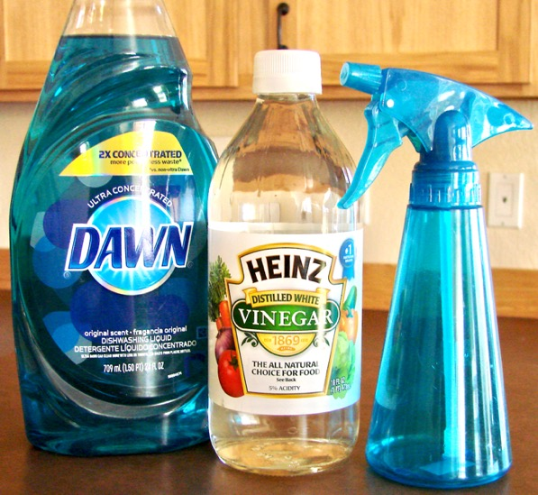 Pin By Cindy Hetherman On Cleanup How Do You Clean Tinted House Windows Liquid Dish Soap
